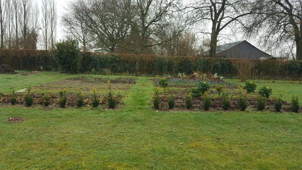 Mon jardin potager en hiver